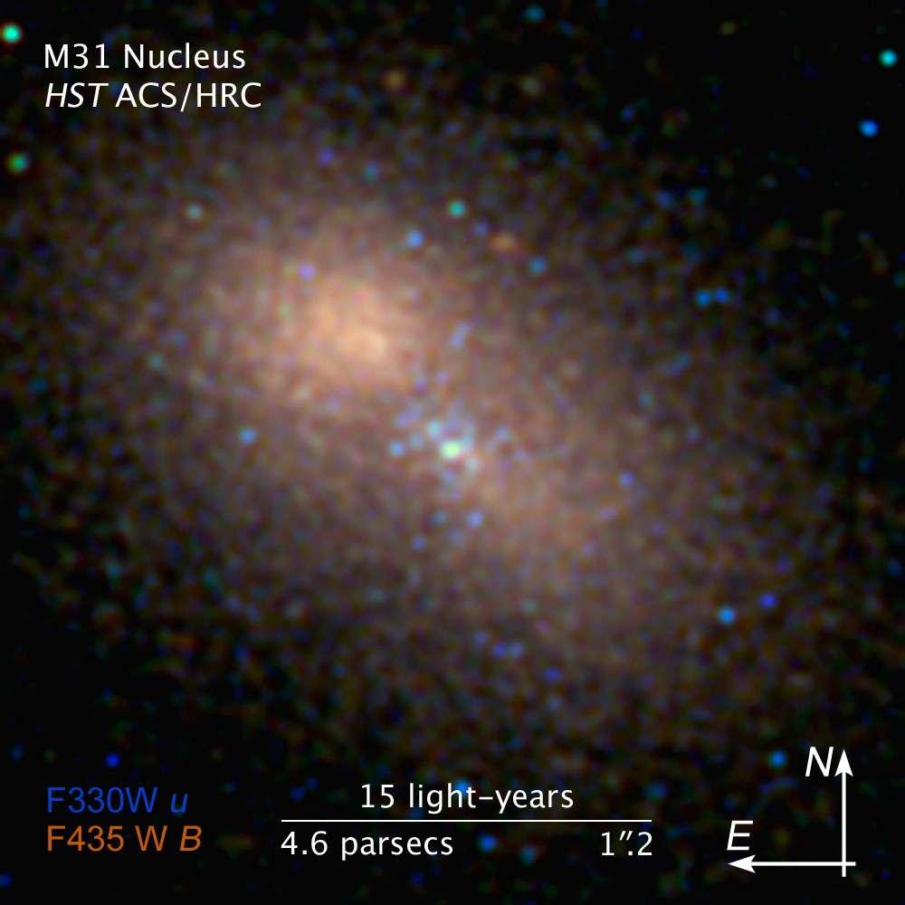 Détail du noyau de la galaxie d'Andromède. Le trou noir central hypermassif est entouré d'une grappe d'étoiles bleues et d'un vaste halo de vieilles étoiles. © Nasa/Esa/STScl