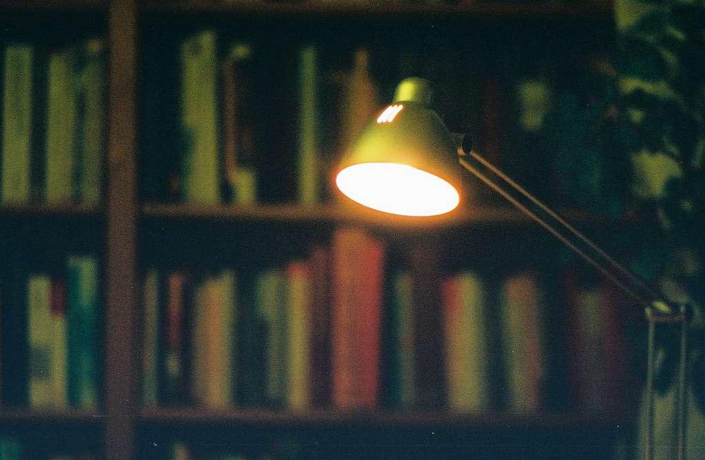 Il est possible de procéder au recyclage des ampoules fluocompactes et Led. Les ampoules à filament ne sont pas intégrées au dispositif. © Audrius Juralevicius, Flickr, cc by 2.0