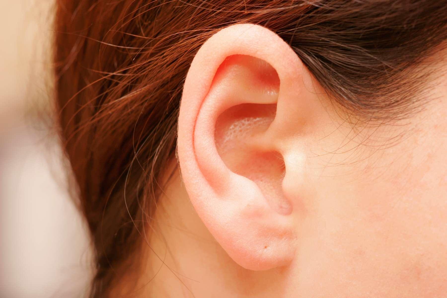 Les muscles autour de nos oreilles sont stimulés par le son. © AlexandreNunes, Adobe Stock