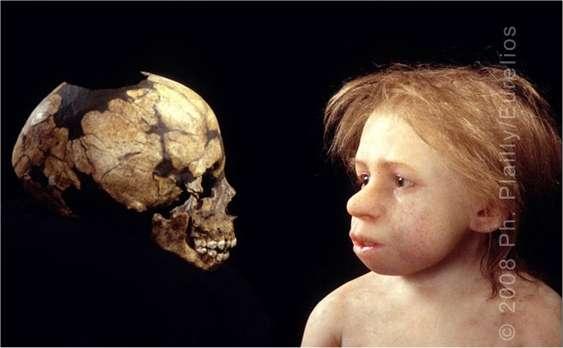 Un crâne d'un enfant néandertalien et une représentation réalisée par Elizabeth Daynès. L'Homme de Néandertal a vécu 300.000 ans. Son nom vient de l'endroit où le premier squelette a été découvert en 1856 : la vallée de Neander, en Allemagne. Vallée se disant thal en vieil allemand, le « h » est conservé dans le nom latin Homo neanderthalensis, et par certains, dans le nom francisé. © Ph. Plailly, Eurelios