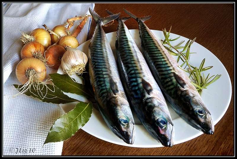 Pour remplacer le sel dans vos recettes de poisson, pensez aux herbes, aux épices ! © jl62, Flickr CC