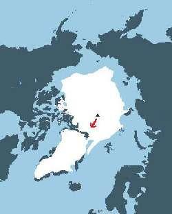 En rouge, la direction prise pas Polar Observer. Il devrait être récupéré début juillet par le brise-glace russe Yamal en mer du Groenland, entre le 85 et le 89 degrés de latitude nord.Crédit : DR