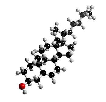 Molécule de cholestérol. Crédit : 3Dchem