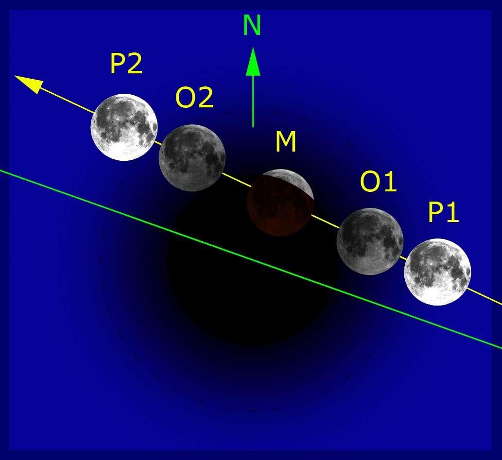 Série d'images réalisée au sud de Syracuse (Sicile) au foyer (F/D=10) d'un télescope Schmidt-Cassegrain Celestron Nexstar 5 de 127mm. Les phases partielles ont été exposées 0,5 sec ou 1 sec sur équivalent 400 ISO. © Philippe Morel, SAF