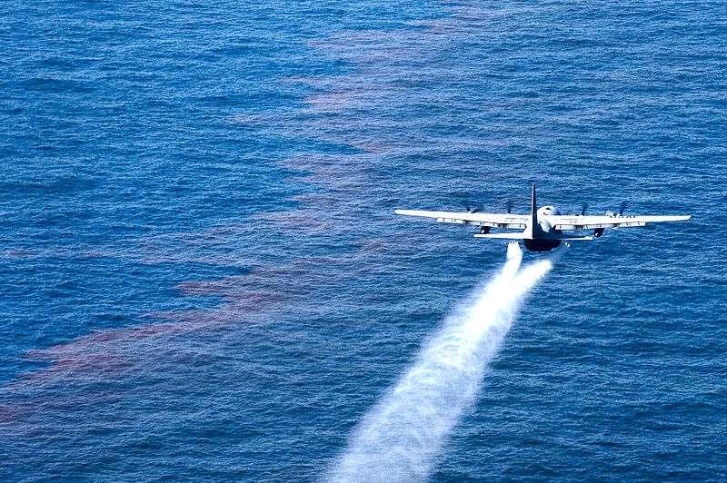 Ce Lockheed C-130 Hercules de l'armée américaine largue des dispersants sur du pétrole libéré lors de la catastrophe de la plateforme Deepwater Horizon. Le mélange pétrole-dispersant serait plus nocif pour les bars Dicentrarchus labrax que le pétrole seul. © Adrian Cadiz, Wikimedia Commons, DP