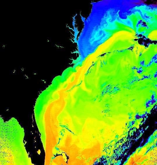 Données collectées par l'instrument Modis du satellite Terra. Les fausses couleurs permettent d'observer le courant du Gulf Stream le long de la côte est des États-Unis. Les couleurs indiquent la température de l'océan, avec du plus froid vers le plus chaud : violet, bleu, turquoise, vert-jaune, orange et rouge. Les parties noires délimitent les zones où il manque des données. © Donna Thomas/Modis Ocean Group Nasa/GSFC SST product by R. Evans et al., U. Miami
