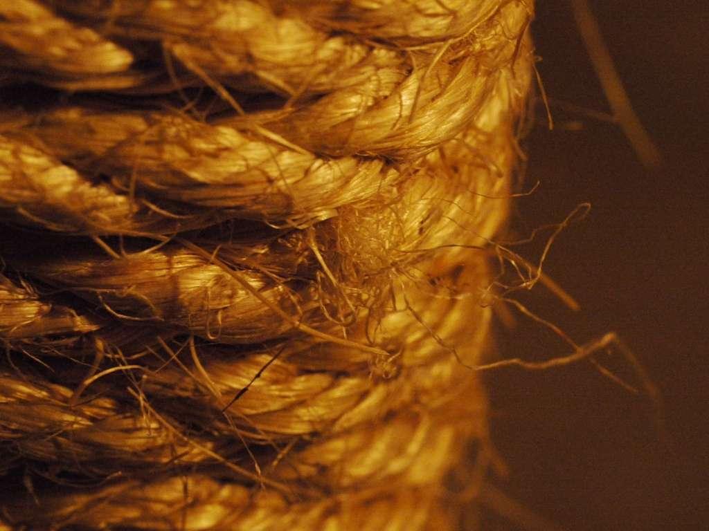 La moquette coco, comme son nom l'indique, est fabriquée à base de noix de coco. © Insulinde, Flickr, cc by sa 2.0