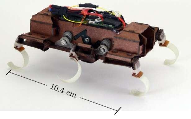 Le X2-VelociRoACH est actuellement le robot à pattes le plus rapide de sa catégorie. Il se déplace à la vitesse de 4,9 mètres par seconde. © UC Berkeley