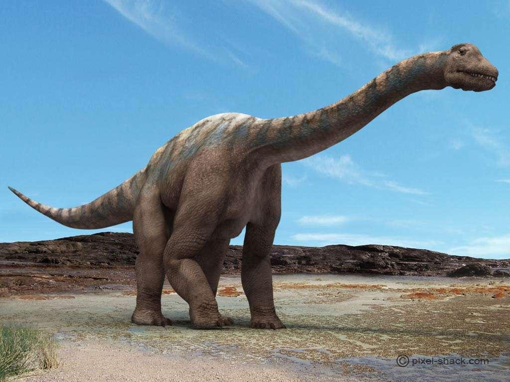 L'Argentinasaurus, certainement le plus grand dinosaure qui ait existé. © Courtesy of Jon Hugues, www.pixel-shack.com