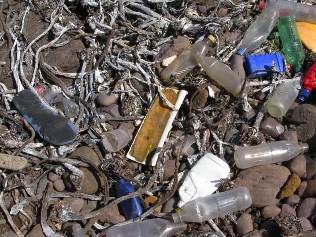 Une fois en mer, les déchets plastiques peuvent s'échouer sur les plages, sédimenter au fond des océans, être ingérés par les animaux marins ou rejoindre l'une des mers de plastiques... Au Royaume-Uni, près de 60 % des détritus arrivant sur le littoral maritime se composerait de plastique. © Doug Lee, Geograph, CC by-sa 2.0