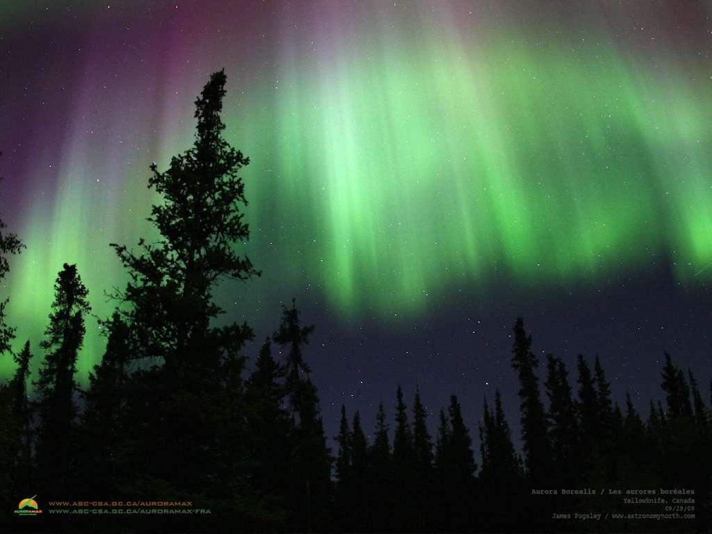 Une aurore polaire photographiée depuis le sol canadien : un magnifique spectacle qu'on peut suivre presque chaque nuit en direct sur le site Internet AuroraMax. © AuroraMax
