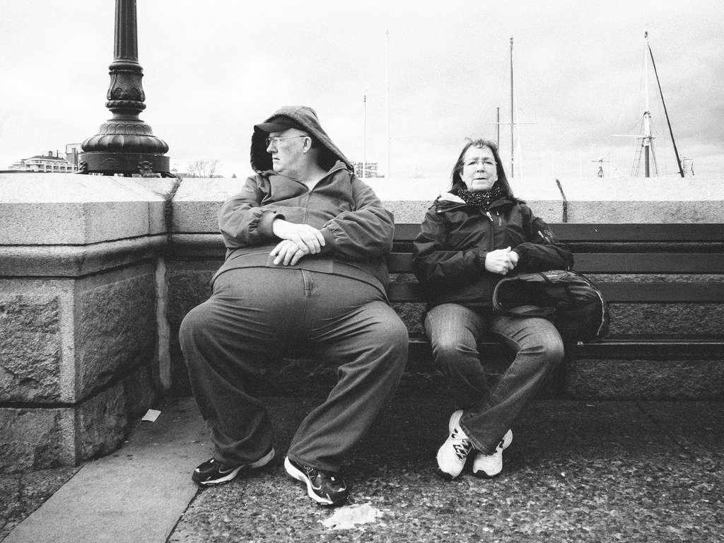 L'obésité est un problème de santé publique qui augmente le risque de contracter des maladies comme le diabète et le cancer. Cette étude montre que le dérèglement de la flore intestinale chez des souris obèses peut conduire au développement du cancer du foie. © Joris Louwes, Flickr, cc by 2.0