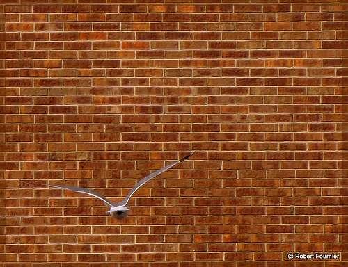 Le contremur assure la solidité d'un premier mur. © , CC-BY-NC-ND 2.0, Flickr