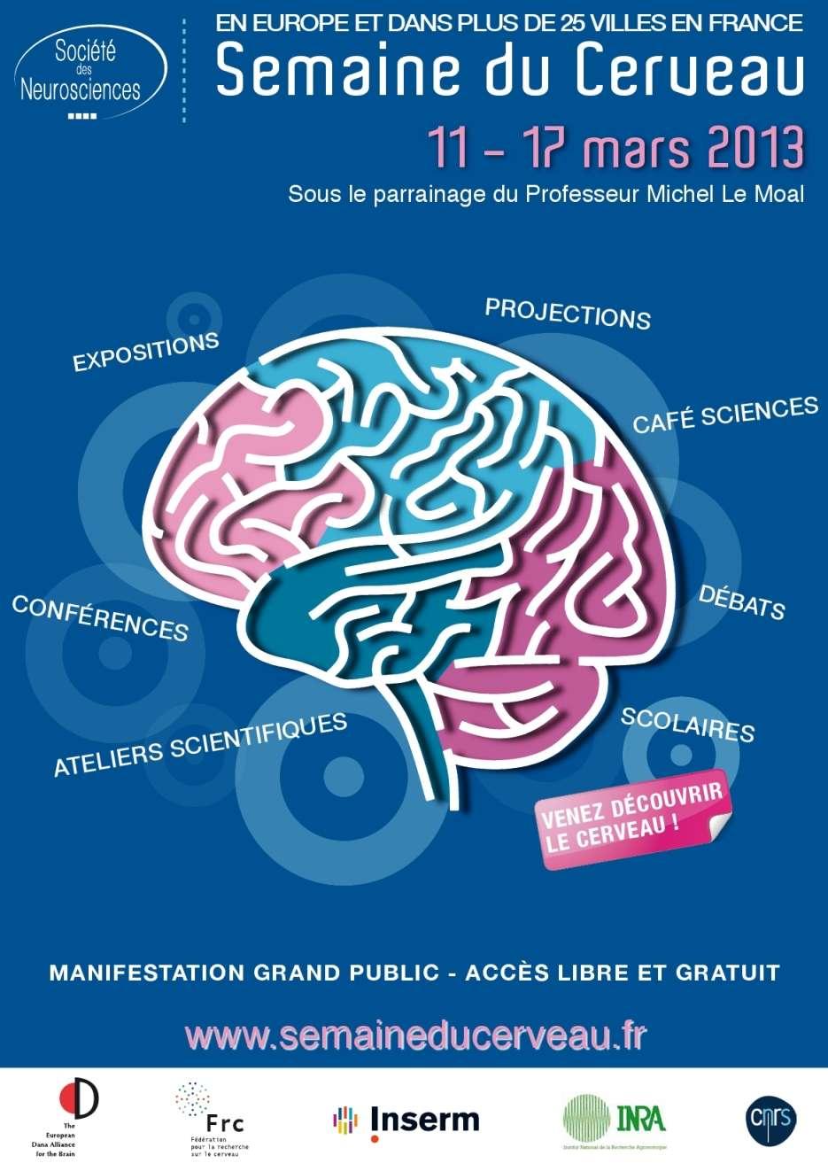 Le Semaine du cerveau, c'est un événement international qui se déroule dans 62 pays simultanément, et ce depuis 1999. © Société des neurosciences