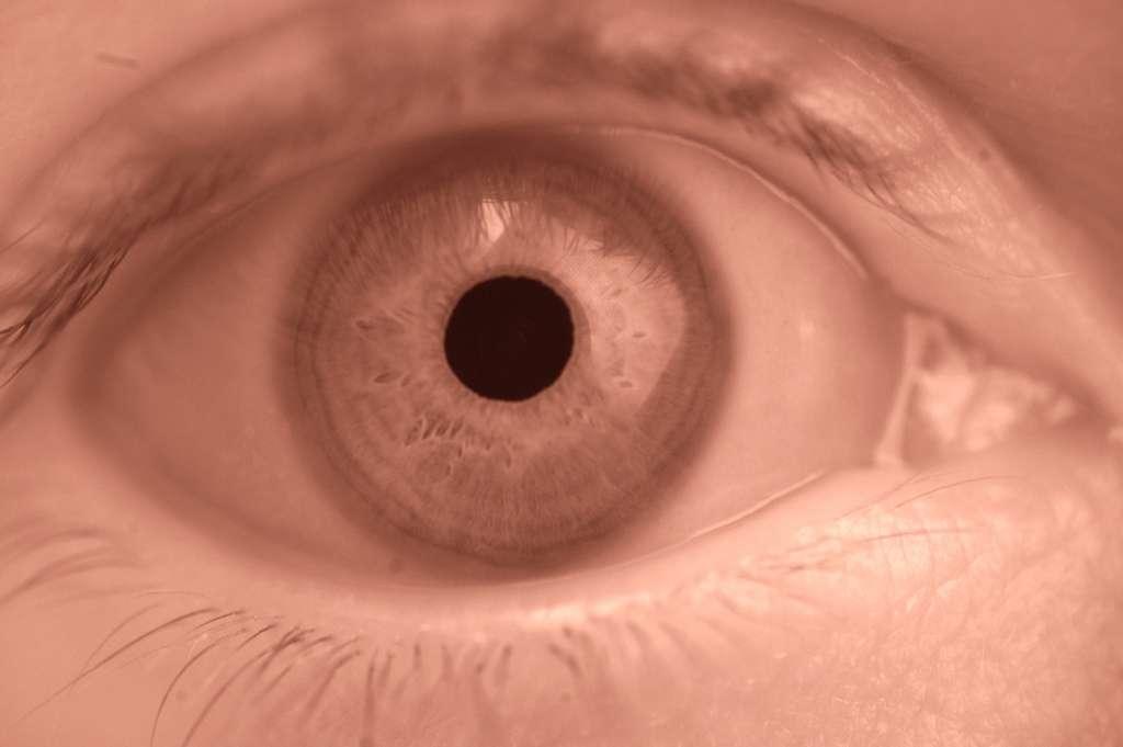 Un jour, pourrons-nous voir dans l'infrarouge ? L'Homme amélioré relève de moins en moins du fantasme. © Michael Kappel, Flickr, cc by nc 2.0