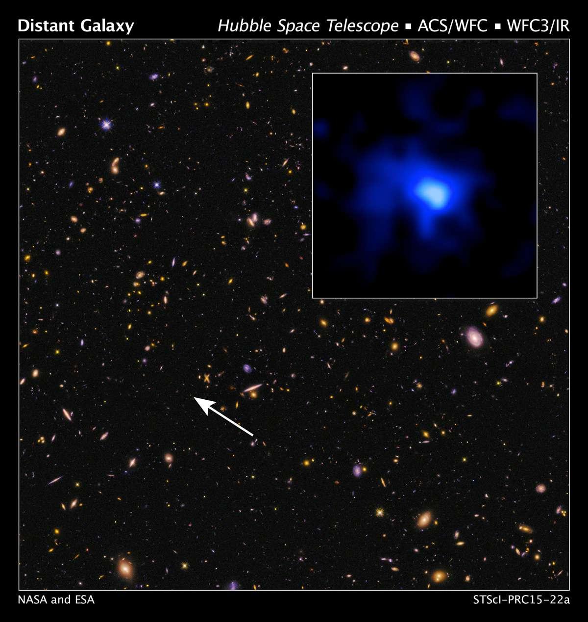L'objet EGS-zs8-1 est indiqué sur cette image d'Hubble extraite du sondage dans le proche infrarouge et le visible Candels (Cosmic Assembly Near-infrared Deep Extragalactic Legacy Survey). Distante de plus de 13,1 milliards d'années-lumière de nous, soit un décalage vers le rouge, ou redshift, de 7,7, elle est actuellement la galaxie la plus lointaine jamais observée. © Nasa, Esa, P. Oesch et I. Momcheva (Yale University), 3D-HST, HUDF09/XDF Teams