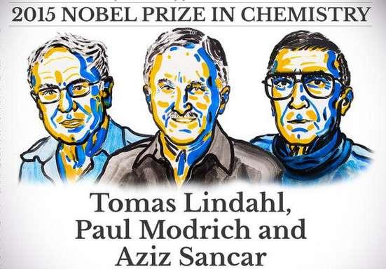 Les trois lauréats du prix Nobel de chimie 2015 ont décrit les mécanismes moléculaires de réparation de l'ADN. © Comité Nobel