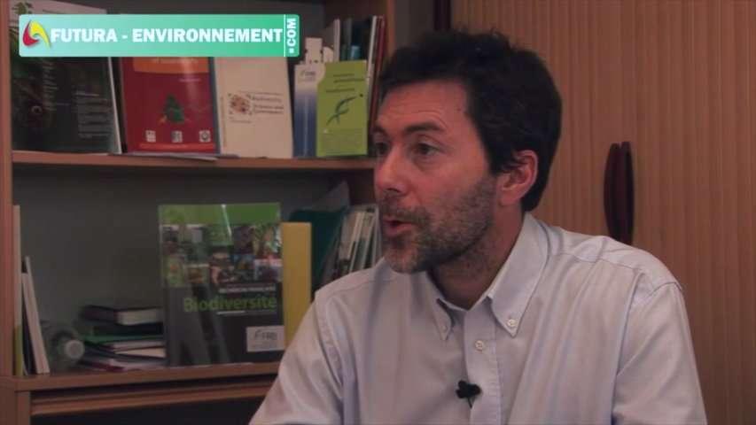 Interview : quel avenir pour la biodiversité ?
