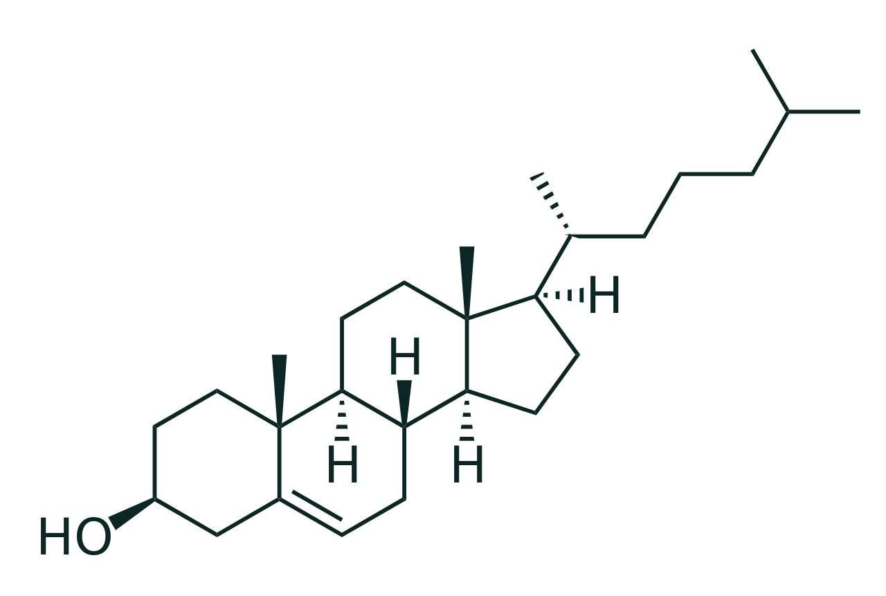 Représentation de Cram de la molécule de cholestérol. © Boris TM, Wikipédia, DP