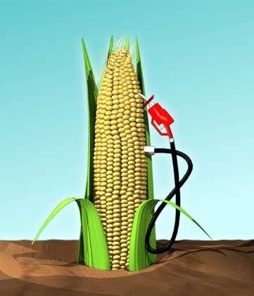 Les biocarburants présentent des défauts importants. © DR