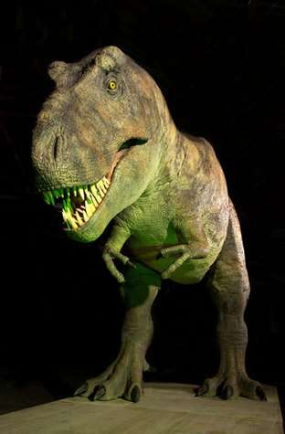 Le T. rex