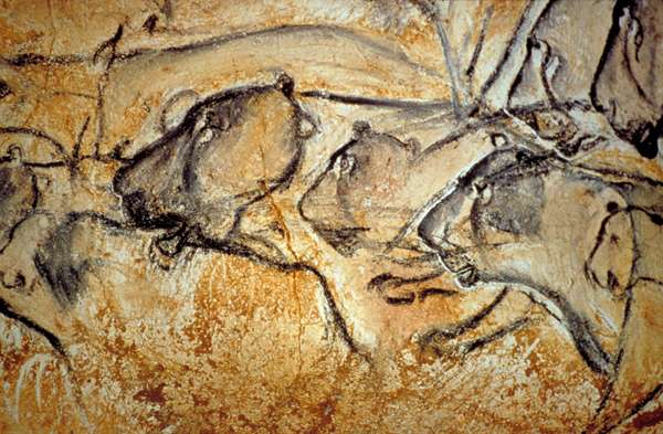 Grands lions des cavernes, peints dans l'une des salles de la grotte Chauvet-Pont d'Arc. © DRAC-Rhône-Alpes/Ministère de la Culture et de la communication