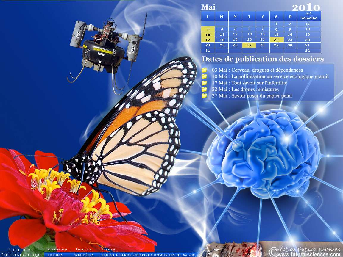 Mai 2010 : drones, infertilité et drogues. Crédits FS.