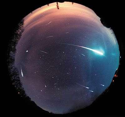 On voit très bien sur cette image du ciel entier (très grand champ) que les Léonides proviennent d'un même point : le radiant.Crédit : Astronomy Picture of the Day