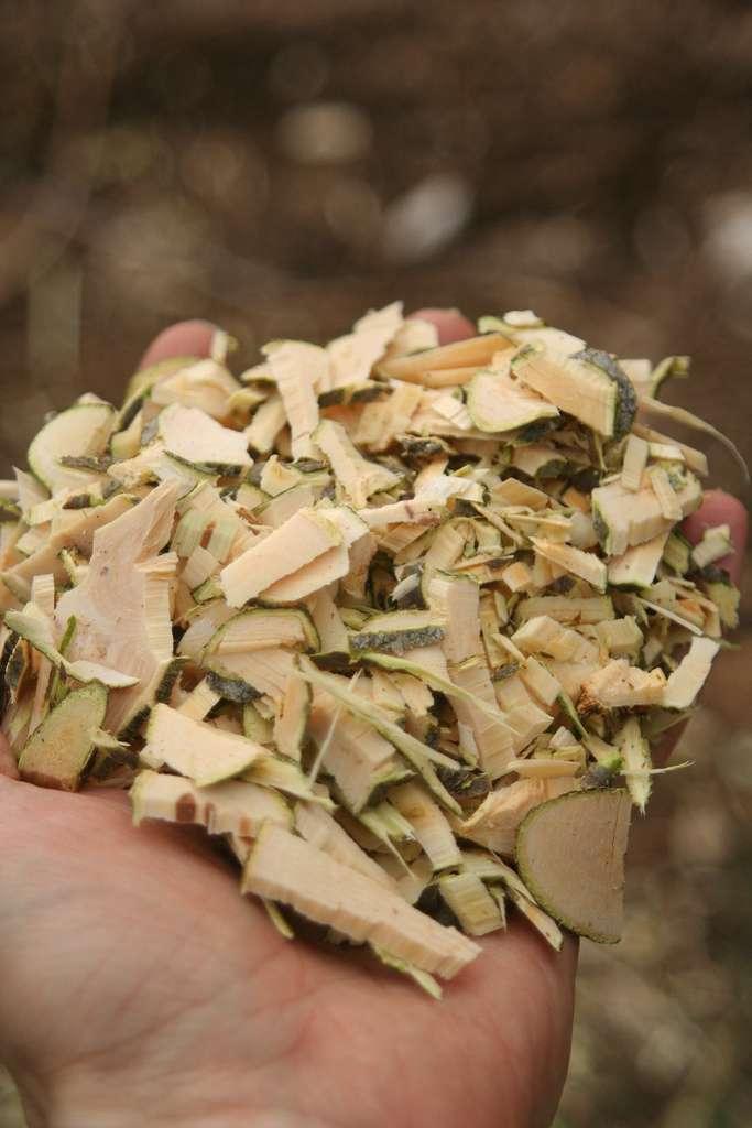 Une poignée de bois raméal fragmenté. Celui-ci est fabriqué à partir de rameaux vivants fraîchement coupés. © arpent nourricier, Flickr, cc by sa 2.0