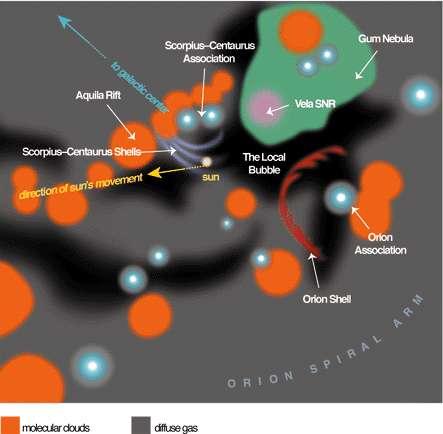 Illustration de la région de la Voie lactée où évolue actuellement le Soleil (sun). Nous traversons le nuage interstellaire local dans lequel est présent la Bulle locale (en noir, The Local Bubble). Longue de 300 années-lumière, elle a été créée, il y a environ 10 millions d'années, par plusieurs supernovae. © Linda Huff (American Scientist), Priscilla Frisch (University of Chicago)