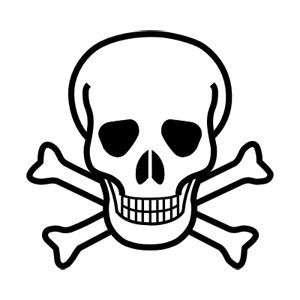 Tête de mort, emblème de ralliement des pirates de toutes générations...