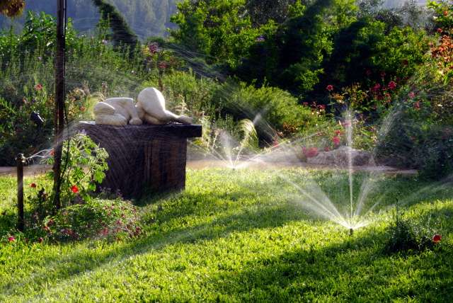 Il est recommandé d'arroser sa pelouse pas plus d'une fois par semaine, surtout le soir - Crédits DR.