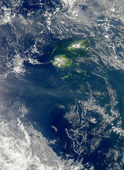 Les cyanobactéries forment des filaments verts dans les océans, visibles du ciel. © DR