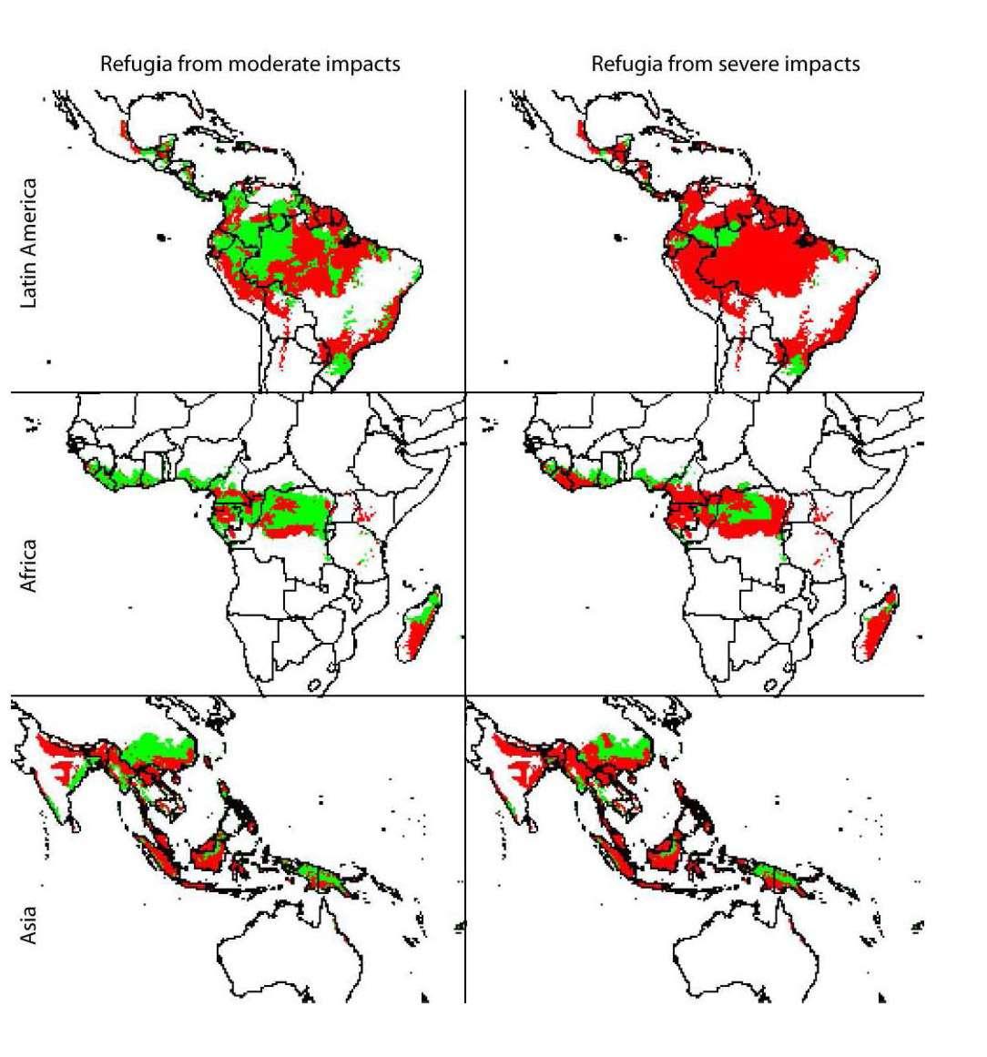 Selon l'impact de l'activité humaine et le changement climatique, les refuges écologiques (en vert sur l'image) sont plus ou moins importants. Crédits Conservation Letters / Greg Asner