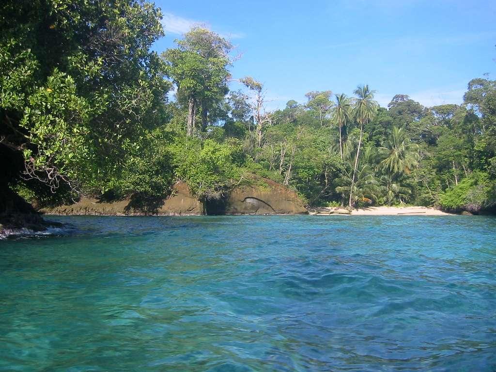 Escudo de Veraguas est une petite île de 3,4 km2 située dans la mer des Caraïbes, et appartenant au Panama. Elle abrite deux espèces endémiques, le paresseux nain et l'artibée solitaire (une chauve-souris), et bon nombre d'autres espèces. © contraquien, Flickr, cc by nc sa 2.0