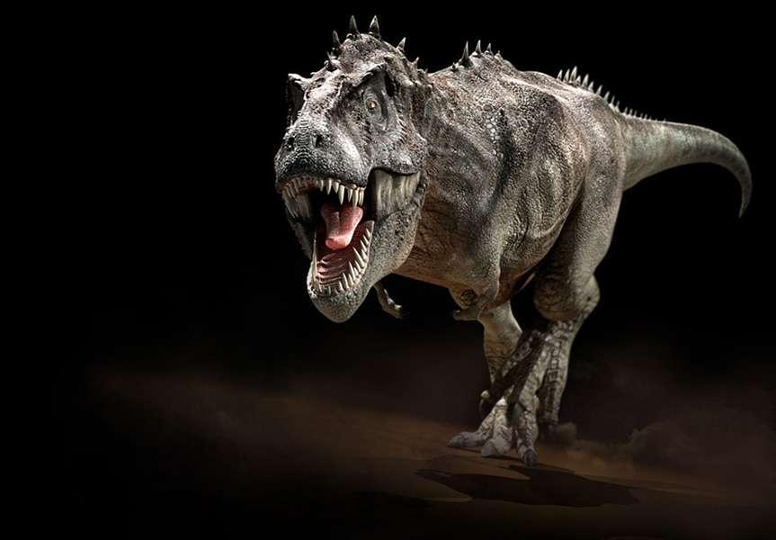 Et si vous alliez au musée pour voir un véritable dinosaure ? © Courtesy of Jon Hugues