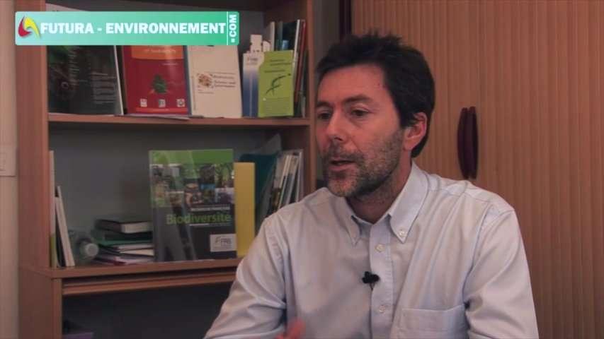 Interview : la biodiversité, tissu vivant de la planète