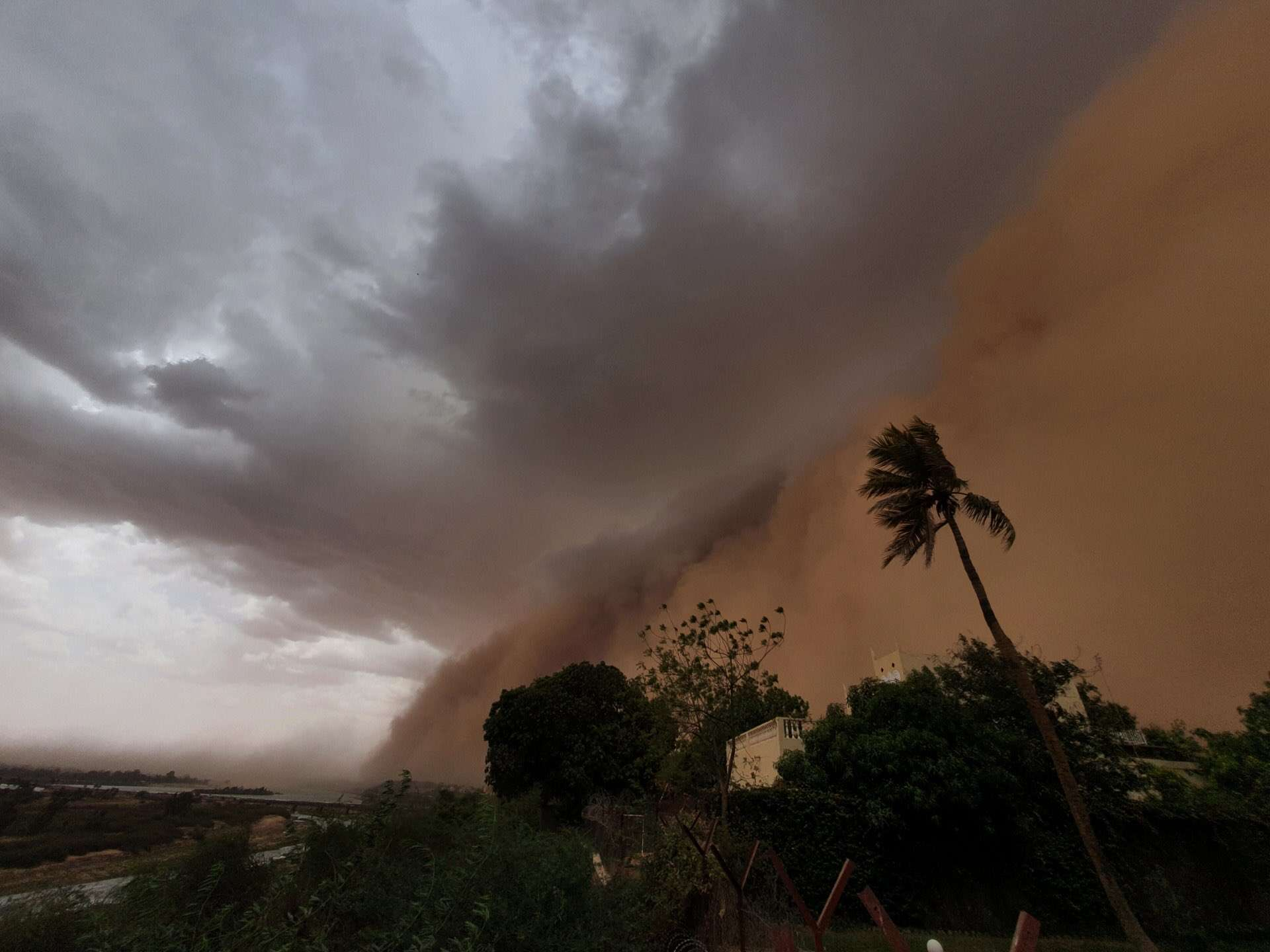 Une tempête de sable a plongé Niamey dans le noir en peine journée. © David Blane, Twitter