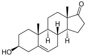 La DHEA est une hormone stéroïdienne dont la structure est proche de celle de la testostérone. Crédits DR.