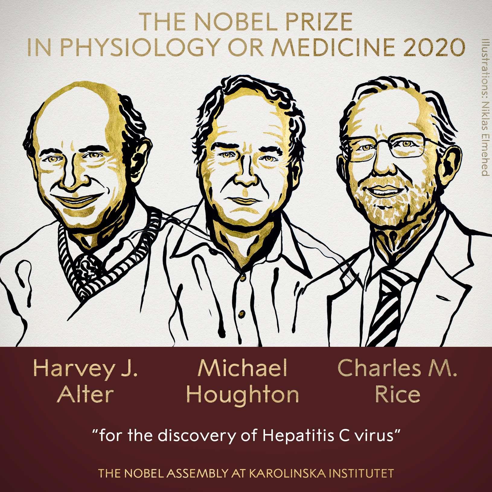 Les trois prix Nobel 2020 de physiologie et de médecine : Harvey James Alter, Michael Houghton et Charles M. Rice. © Bertil, Adobe Stock