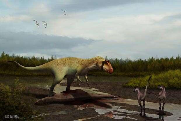 Siats meekekorum, à gauche, un théropode carnivore (découvert récemment en Amérique du Nord), vivait il y a 98 millions d'années. Environ 33 millions d'années plus tard, les dinosaures non aviens tireront leur révérence comme tant d'autres organismes terrestres, marins et dulçaquicoles. On ne sait pas précisément ce qui provoqua cette hécatombe. L'impact d'un corps céleste est une explication classique, appuyée par la richesse de ces couches géologiques en iridium et la découverte d'un cratère à Chicxulub, au Mexique. Mais que s'est-il passé exactement ? © Julia Lacerda