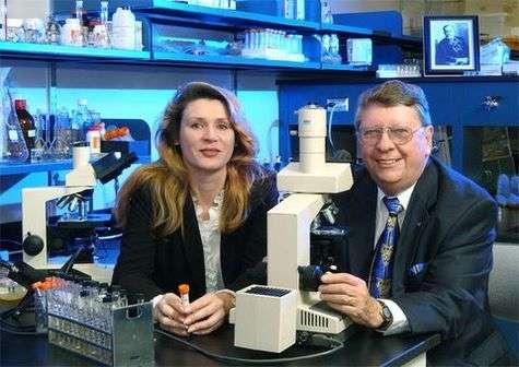 L'astrobiologiste Richard Hoover et la microbiologiste Elena Pikutasont à l'origine de la découverte de la bactérie extrêmophileCrédits : NASA