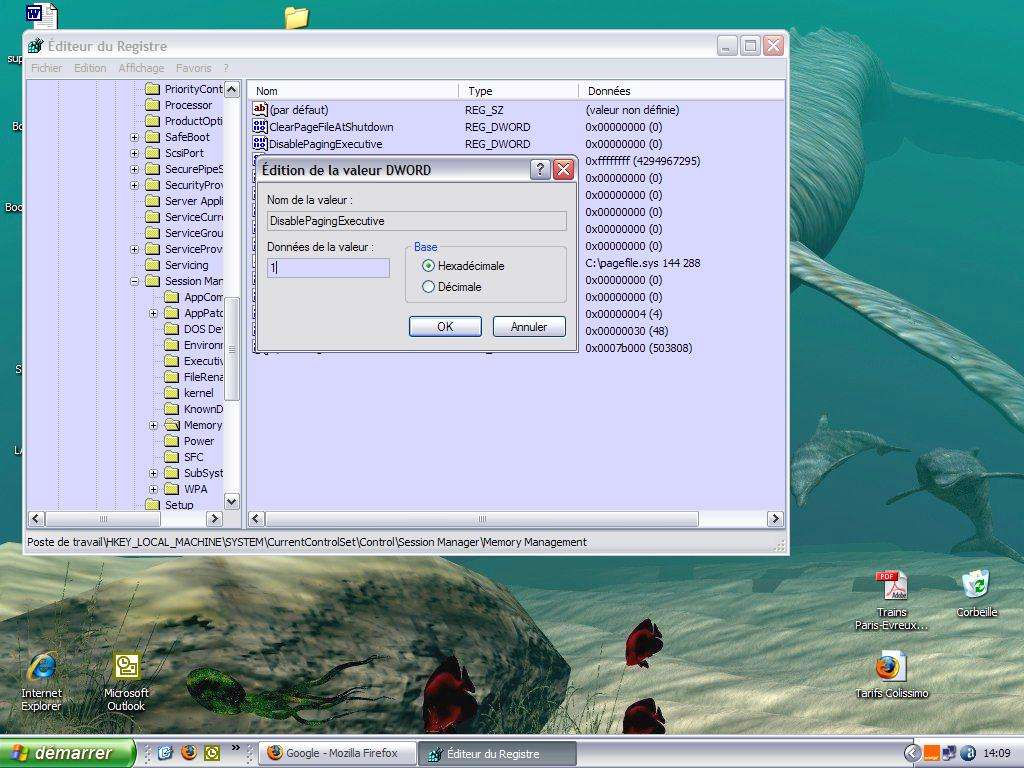 Conservation du noyau de Windows en mémoire - Crédits Futura-Sciences