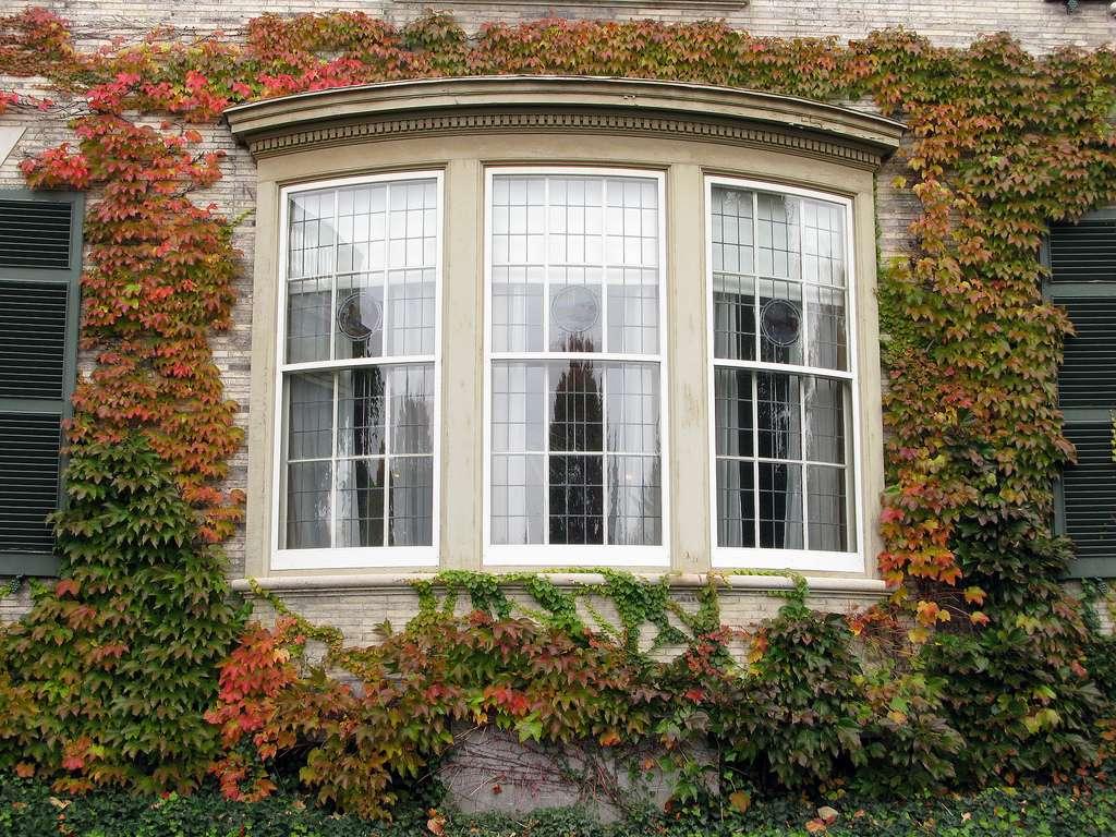 La pose d'une baie vitrée permet d'apporter plus de clarté. © Allen McGregor, Flickr, CC BY 2.0