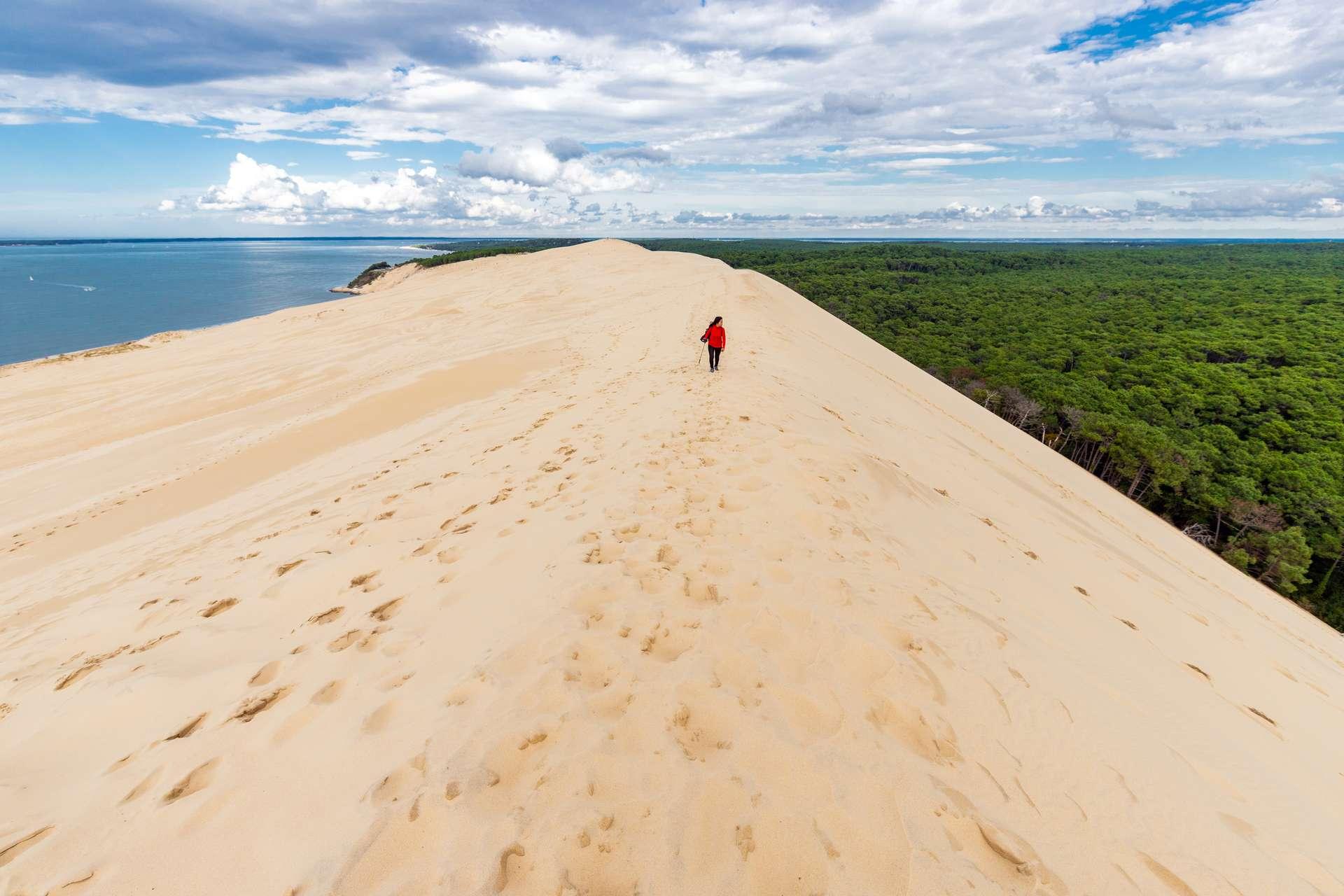 Située en Gironde, la Dune du Pilat est en bordure du massif forestier des Landes de Gascogne et à l'entrée du bassin d'Arcachon. Il s'agit d'un site naturel mouvant, de près de 3 km de long et de plus de 600 mètres de large, dont les mensurations varient au fil des ans. Entre 2017 (110,5 mètres) et 2018 (106,6 mètres), elle avait déjà connu une perte de sable de 3,9 mètres en son point culminant. © Stéphane Bidouze, Adobe Stock