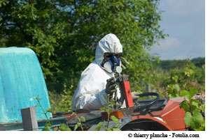 Les pesticides sont probablement une des causes de pathologies atteignant l'appareil génital masculin. © Thierry Planche / Fotolia