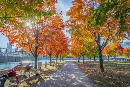 Équinoxe d'automne. © DR