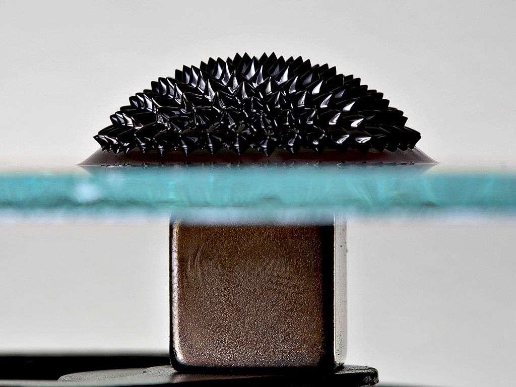 Un ferrofluide est un fluide paramagnétique constitué de particules ferromagnétiques nanométriques en suspension dans un fluide. Cette image montre ce qui se passe lorsqu'un échantillon de ferrofluide est déposé sur une plaque de verre sous laquelle on a placé un puissant aimant permanent à base de néodyme (60Nd), une terre rare. © Gregory F Maxwell, Wikipédia, cc by 3.0