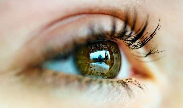 Le glaucome est une cause de cécité, d'où l'importance de le diagnostiquer et de le traiter au plus tôt. © Peter Gorges, Flickr, CC by nc nd 2.0