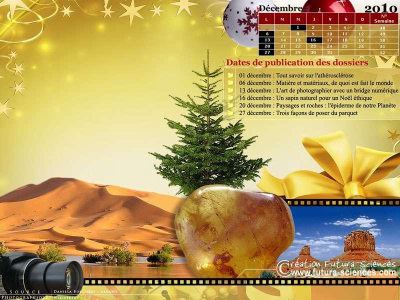 Calendrier à télécharger avec les dossiers du mois de décembre. © Futura-Sciences
